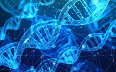 Veranstaltungshinweis: Digitalisierung der Medizin