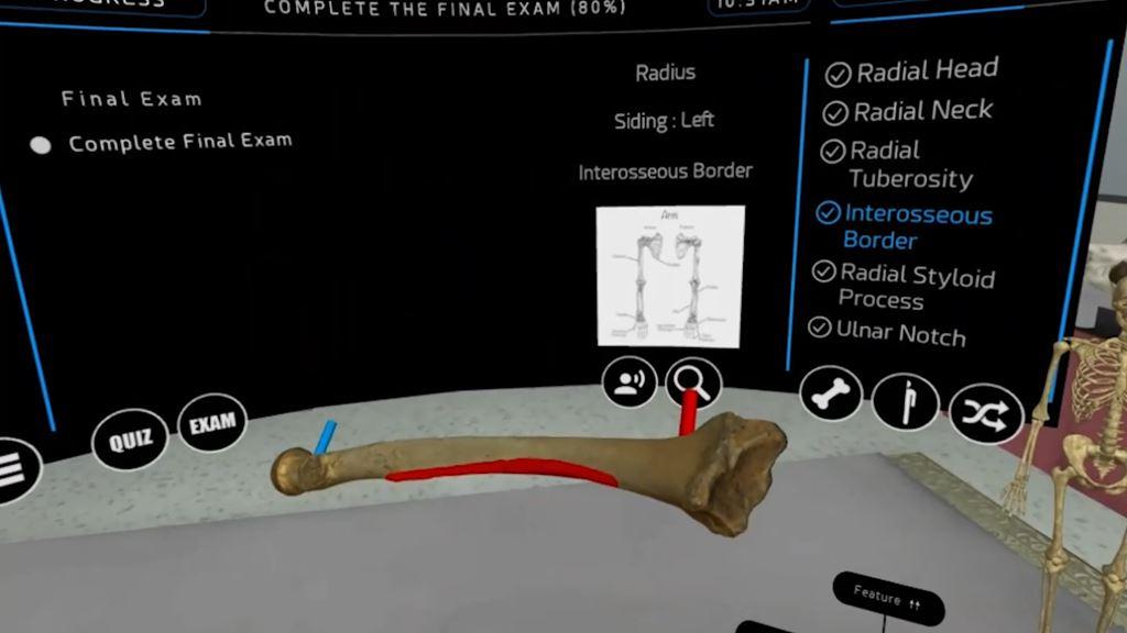 3D-Scans und Virtual Reality in der Anthropologie