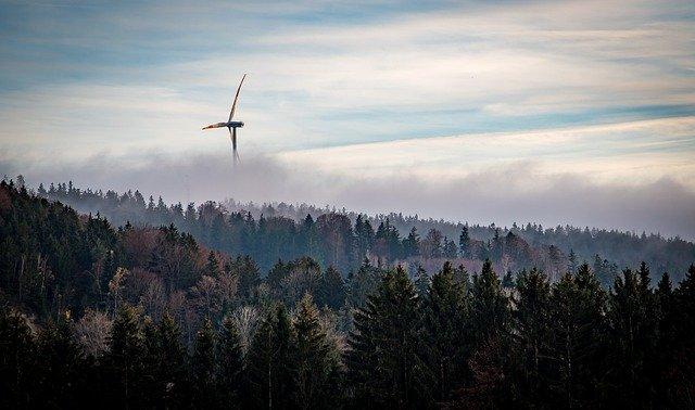 Einigung zu Artenschutz und Windkraftausbau